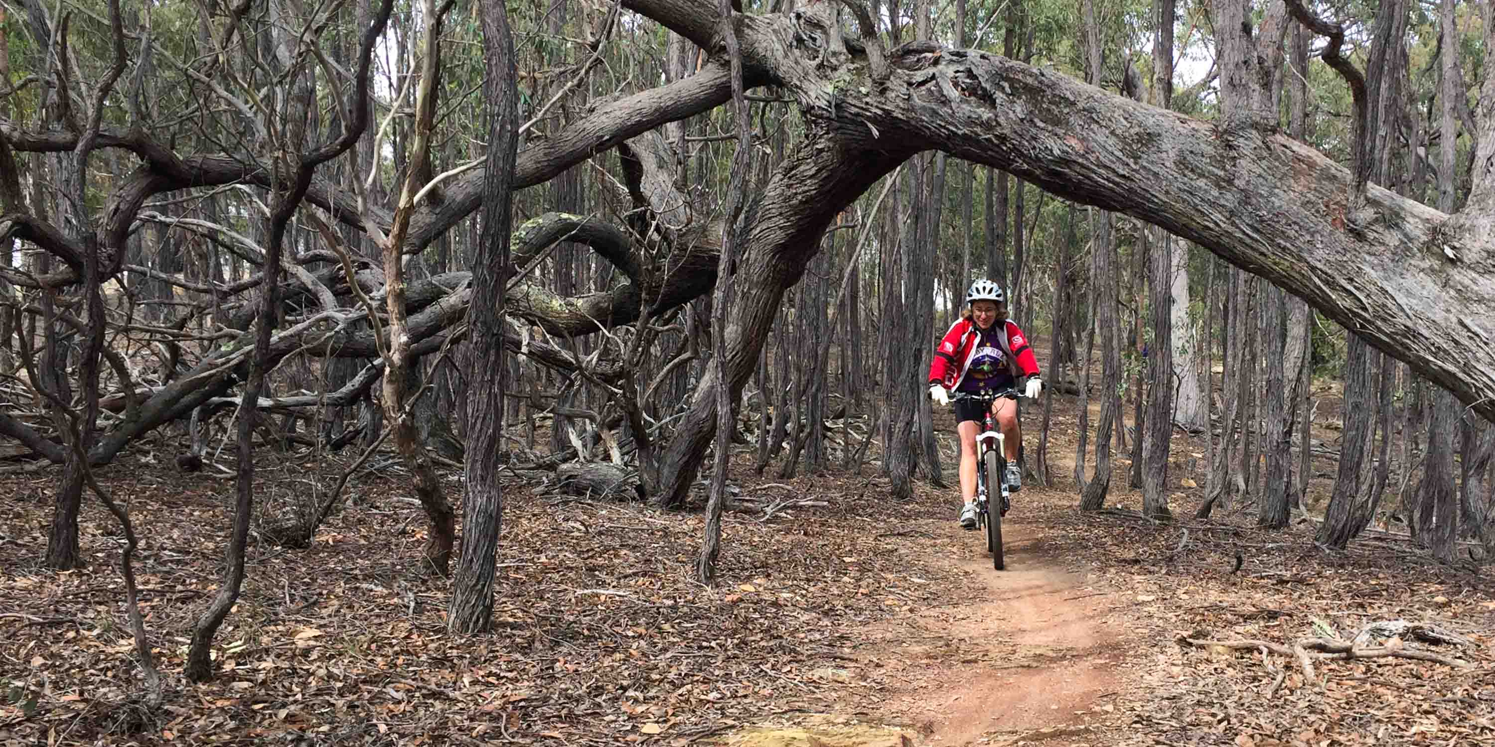 Rider on Canberra Centenary Trail