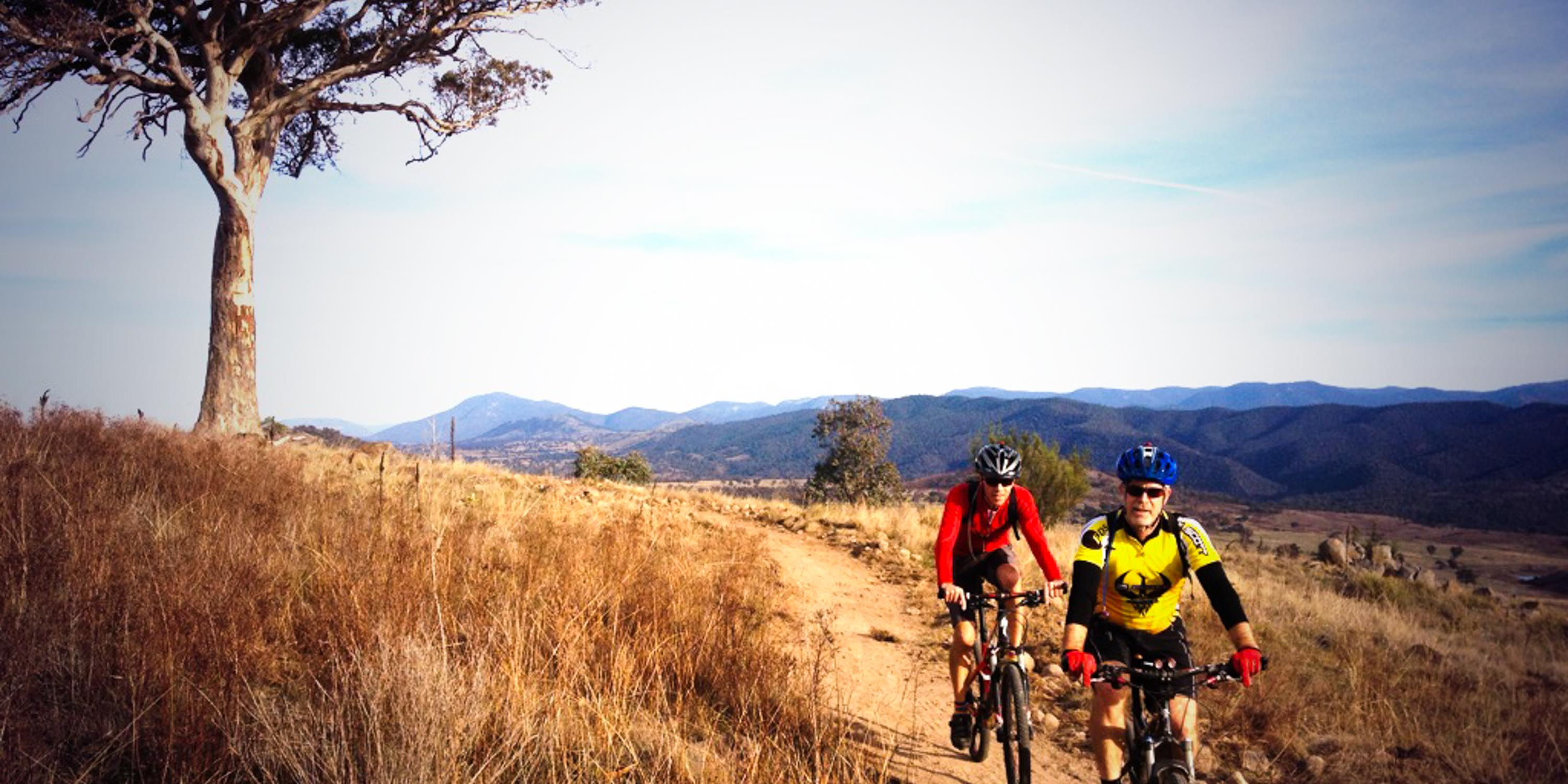 Cyclists on Canberra Centenary Trail